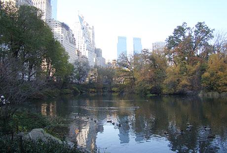 central-park-newyork